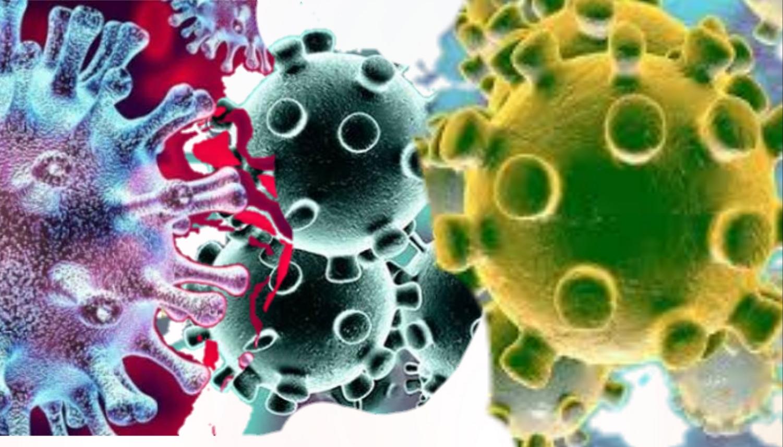 Ilustrasi virus corona. Foto: Rakyatsumut.com/ Istimewa