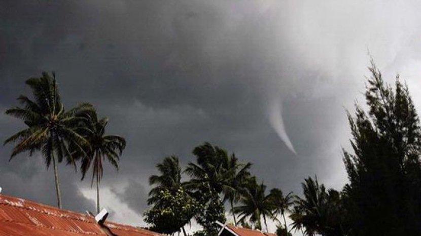 Ilustrasi Anging Puting Biliung. Foto: Sumber Tribun