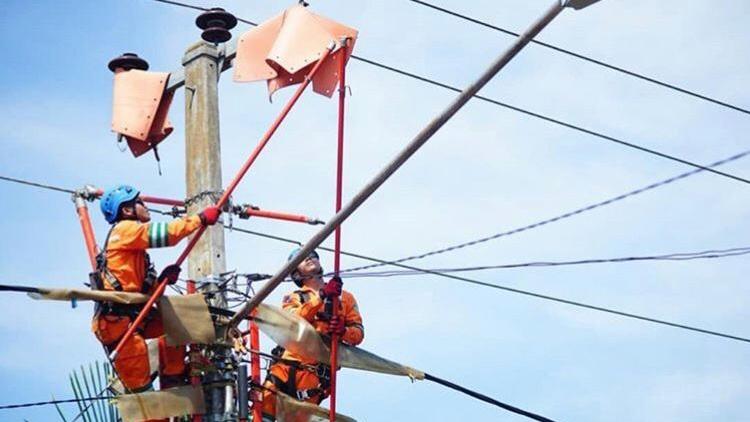 Petugas PLN lakukan perbaikan. Foto: Istimewa.