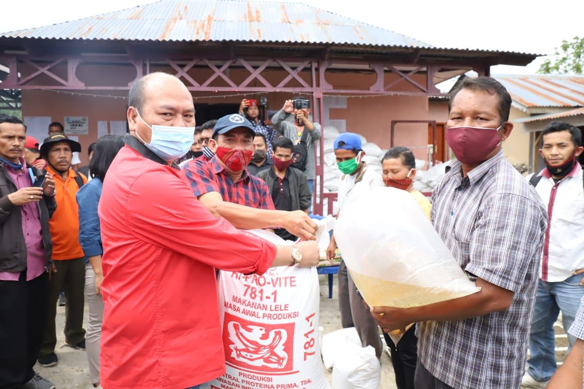 Bupati Taput, Nikson Nababan saat membagikan benih kepada masyarakat. Foto: istimewa