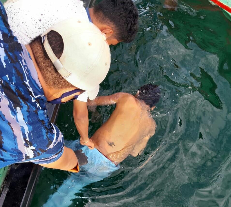 Jasad korban tabrakan kapal Wira Glory dengan KM. Sinar Mas Jaya ditemukan ngambang di perairan laut Pulau Poncan, Kota Sibolga. foto: istimewa