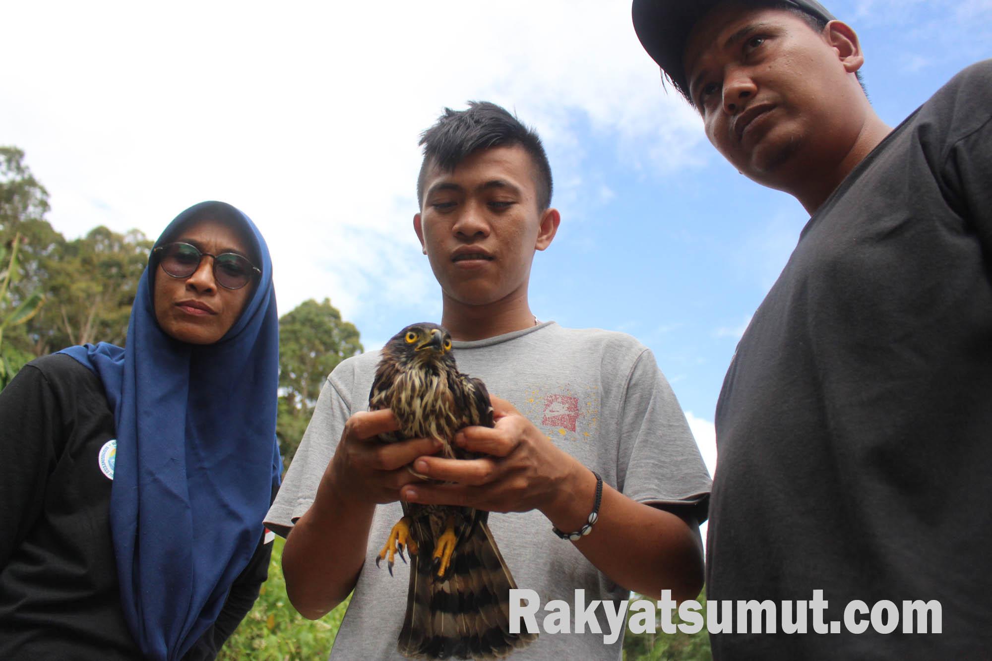 Belzasar Sitompul didampingi pengurus Komunitas Menjaga Pantai Barat (Komantab) saat merilis kembali Elang Alap Jambul di DeSKa. Foto: Rakyatsumut.com